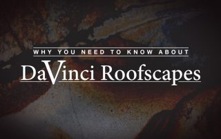 Why You Need to Know about DaVinci Roofscapes