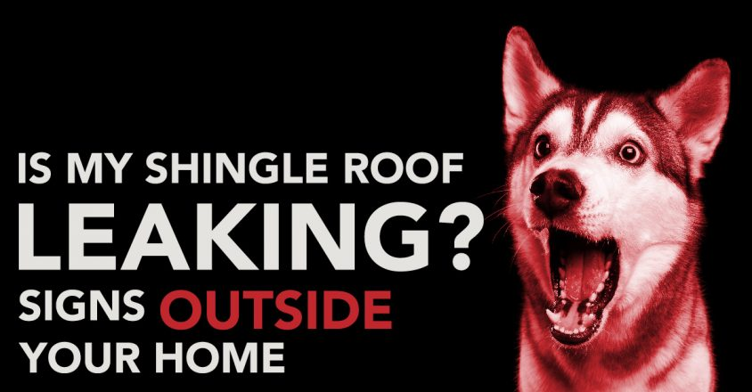 Is My Shingle Roof Leaking? Signs Outside Your Home