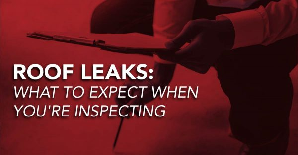 Roof Leaks: What To Expect When You're Inspecting