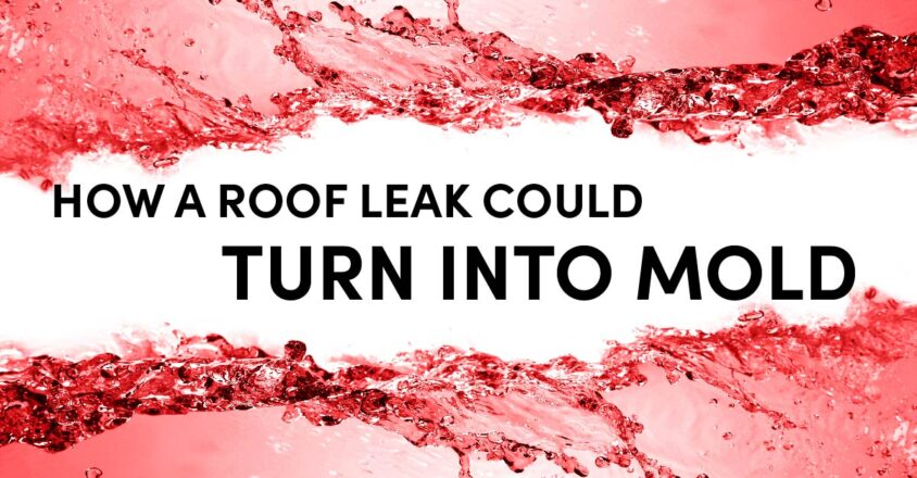 How A Roof Leak Could Turn Into Mold